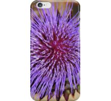 Giant Thistle Flower 4 iPhone Case/Skin