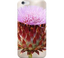 Giant Thistle Flower 1 iPhone Case/Skin