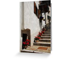 Geraniums on Stepped Street 1 Greeting Card