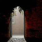 Arch way Colour by Karen  Betts