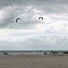 Kite Surfing Lido Beach Florida by Lynn Bolt