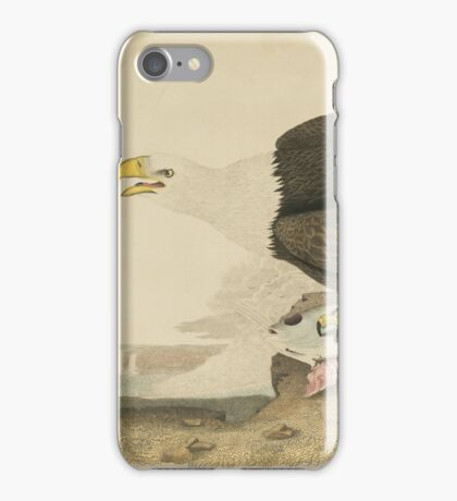 Alexander Wilson - American Ornithology  iPhone Case/Skin