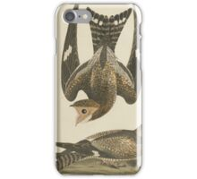 Alexander Wilson - American Ornithology Vol. V, Plate 401808 - 1814 iPhone Case/Skin