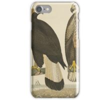Alexander Wilson - American Ornithology Vol. VII, Plate 38108 - 1814 iPhone Case/Skin