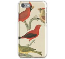 Alexander Wilson - American Ornithology Vol. VII, Plate 581808 - 1814 iPhone Case/Skin