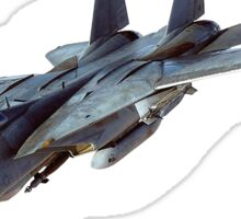 Tomcat, Jet, American, Grumman, F-14, supersonic, twin-engine, two-seat, variable-sweep wing, fighter aircraft.  Sticker