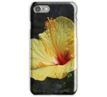 Blooming Yellow Hibiscus Flower iPhone Case/Skin