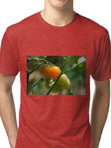 Orange Tomatoes Ripening on the Vine Tri-blend T-Shirt