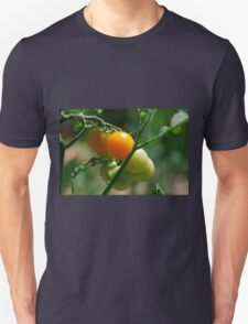 Orange Tomatoes Ripening on the Vine Unisex T-Shirt