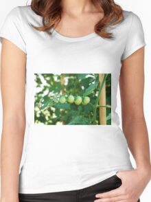 Green Tomatoes on the Vine Women's Fitted Scoop T-Shirt