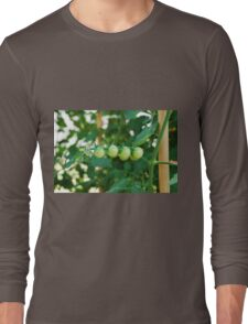 Green Tomatoes on the Vine Long Sleeve T-Shirt