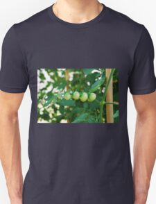 Green Tomatoes on the Vine Unisex T-Shirt