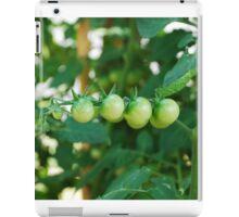 Green Tomatoes on the Vine iPad Case/Skin