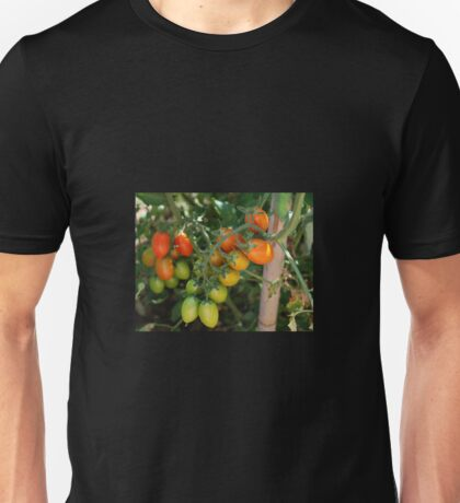 Date Tomatoes Ripening on Vine Unisex T-Shirt
