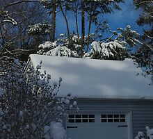 Sun, Shadow, and Snow by Karen Checca