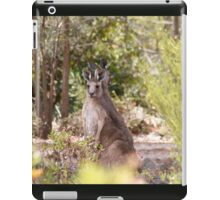 at home, Gladstone, South Australia iPad Case/Skin