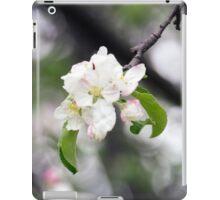 Spring Flower Series 42 iPad Case/Skin
