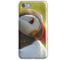 Puffin Portrait iPhone Case/Skin