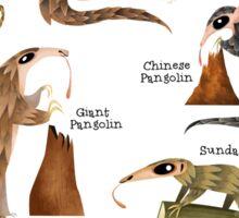 Pangolins of the World Sticker