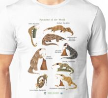 Pangolins of the World Unisex T-Shirt