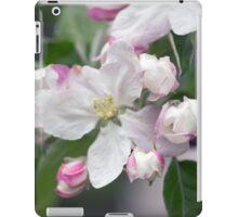 Spring Flower Series 40 iPad Case/Skin