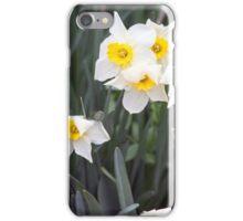 Spring Flower Series 38 iPhone Case/Skin