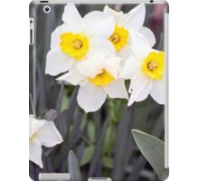 Spring Flower Series 37 iPad Case/Skin