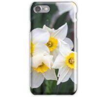 Spring Flower Series 36 iPhone Case/Skin
