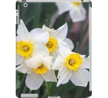 Spring Flower Series 36 iPad Case/Skin