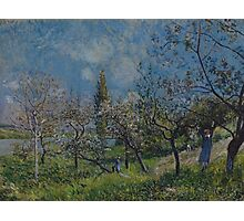 Alfred Sisley - Orchard in Spring  Impressionism  Landscape  Photographic Print