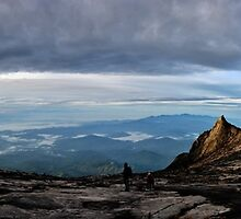 """""""Wide Wild Borneo""""  by Andreas Koerner"""