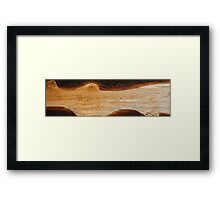 Hard wood river Framed Print