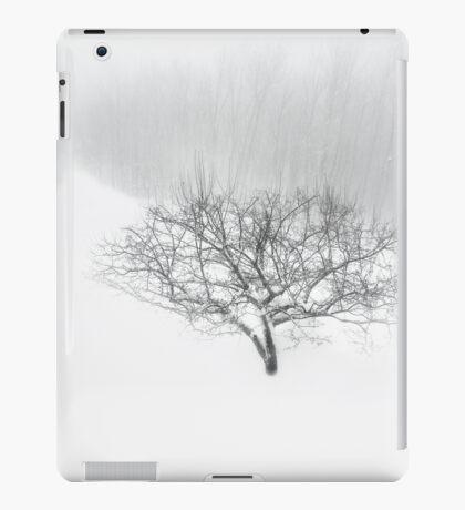 Winter Scenic iPad Case/Skin