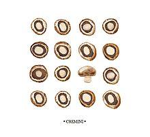 Mushroom Matrix Photographic Print
