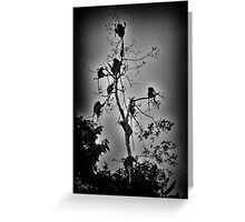 """""""Get-Together"""" (B&W) Greeting Card"""