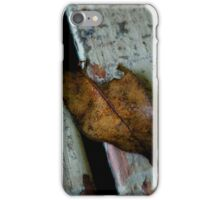 Leaf - on the porch (2009) iPhone Case/Skin