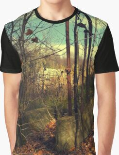 Abandoned - rusted farm equipment (2009) Graphic T-Shirt