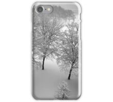 Looking down on snowy trees iPhone Case/Skin