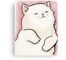Soft Little Kitty Cat Canvas Print