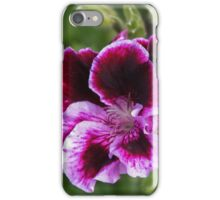 Insect on pansy Leith Park Victoria 20151127 0746   iPhone Case/Skin