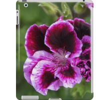 Insect on pansy Leith Park Victoria 20151127 0746   iPad Case/Skin