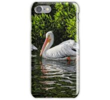 We Three by HH Photography of Florida iPhone Case/Skin