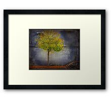 Autumn in town Framed Print