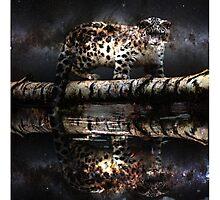 Space Leopard  Photographic Print