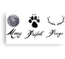 Moony, Padfoot and Prongs Metal Print