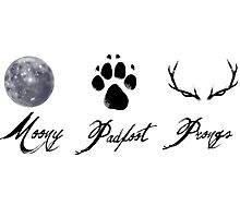 Moony, Padfoot and Prongs Photographic Print