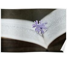 Bookmarked by beauty Poster