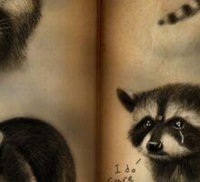 Commander Raccoon Sticker