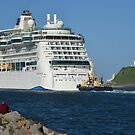 RADIANCE OF THE SEAS by Phil Woodman