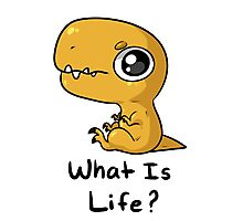 What is Life? Photographic Print